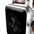 applewatch2_カメラ